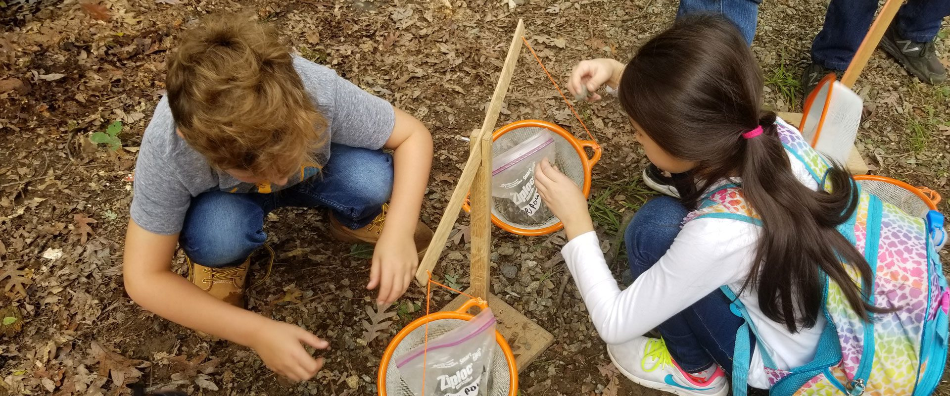 Sorting & Counting with Nature